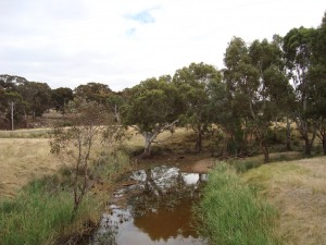 McCallums Creek, Victoria, Australia