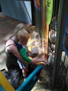 Jess and Ilijah feeding the animals
