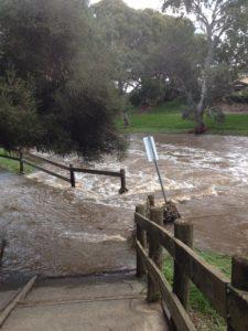 Lochiel Park ford